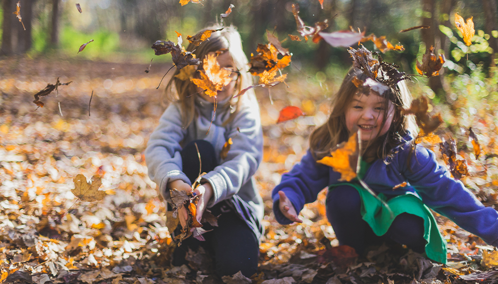 Healthy Activities in the fall season.